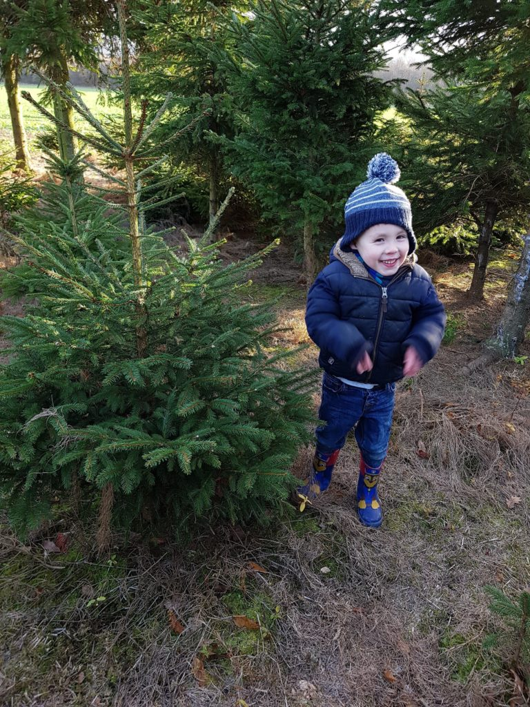 The Little Anglophile smiles next to his favourite tree